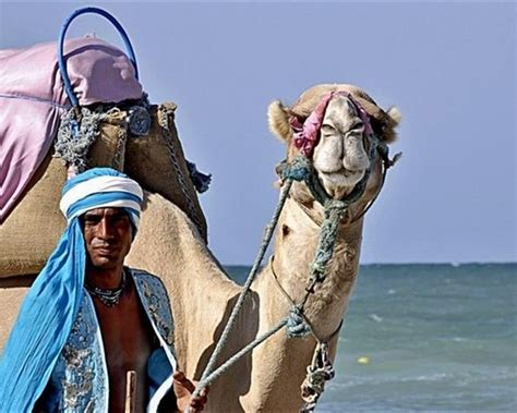 Tunisian Tourism: Algerian and Russian Visitors to Save