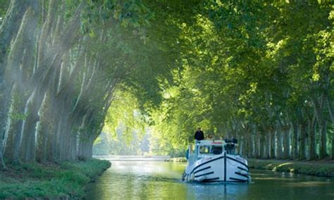 French to say au revoir to canalside trees | World news