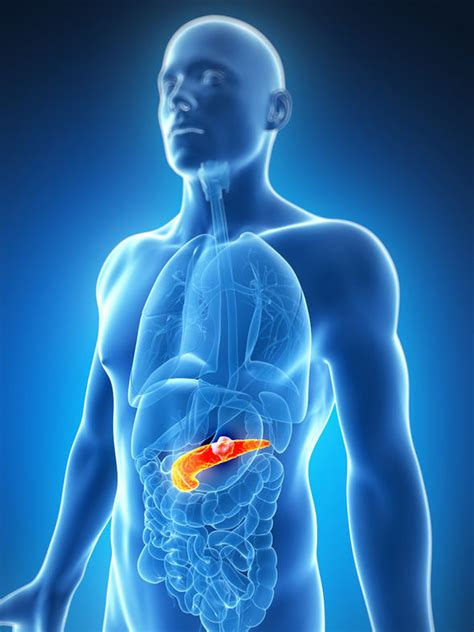 Pancreatic cancer chemotherapy treatment could be boosted