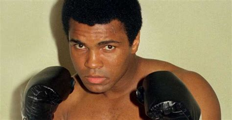 Best 1960s Boxer   List of Top Boxers of the 60s