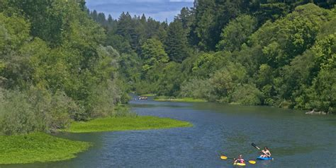 Day Trip From San Francisco to the Russian River Valley